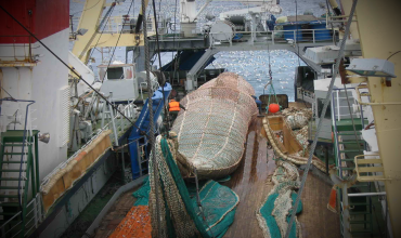 Выборка трала на рыбацкое судно в шторм