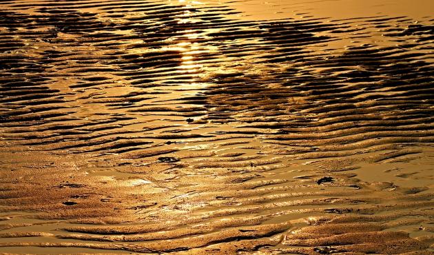 Морские течения
