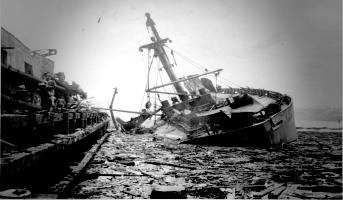 Гранкан — Селитровая катастрофа Техас-Сити