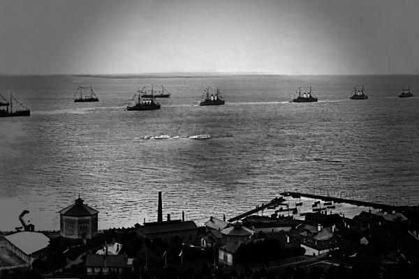 Действия Тихоокеанского флота в годы ВОВ