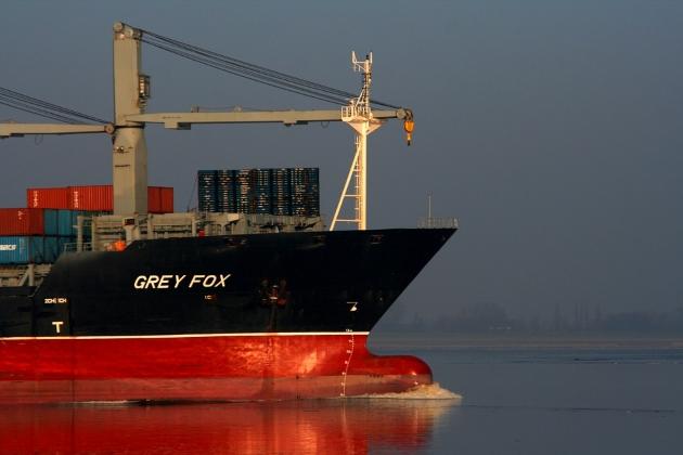 Контейнеровоз Grey Fox