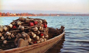 Появление пароходов