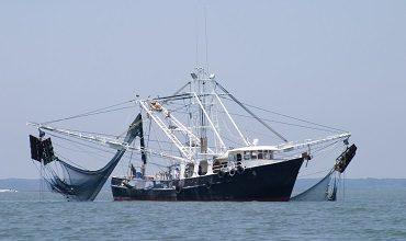Положение о тех. эксплуатации рыболовных судов