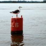 Надводное навигационное оборудование