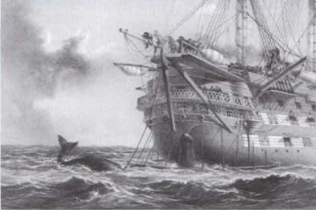 Знаменитый британский 91-пушечный линейный корабль «Агамемнон» осуществляет добычу китов в Атлантическом океане в 1852 г.