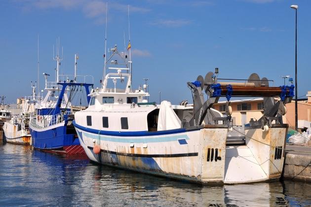 Промысловое судно Nuevo Elena