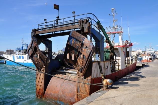 Промысловое судно Yayo Campanares