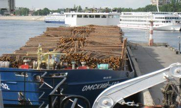 Транспортные характеристики и особенности перевозки леса морем